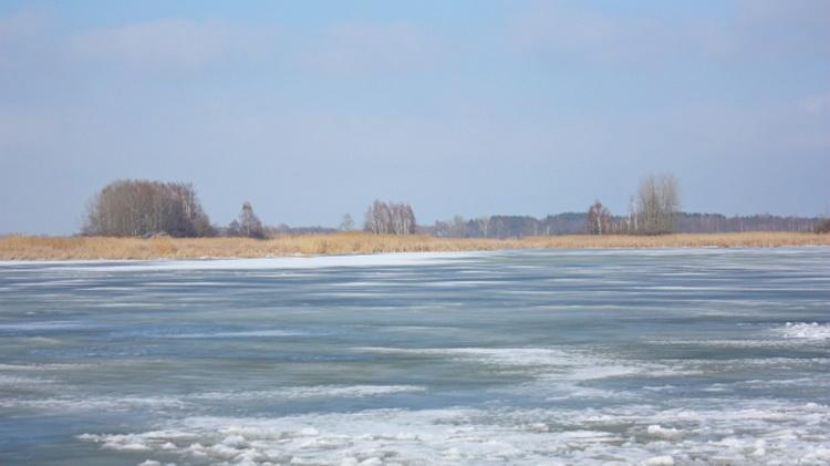 Последний лед